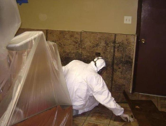 Safe removal of mold from this Ottawa, IL home After