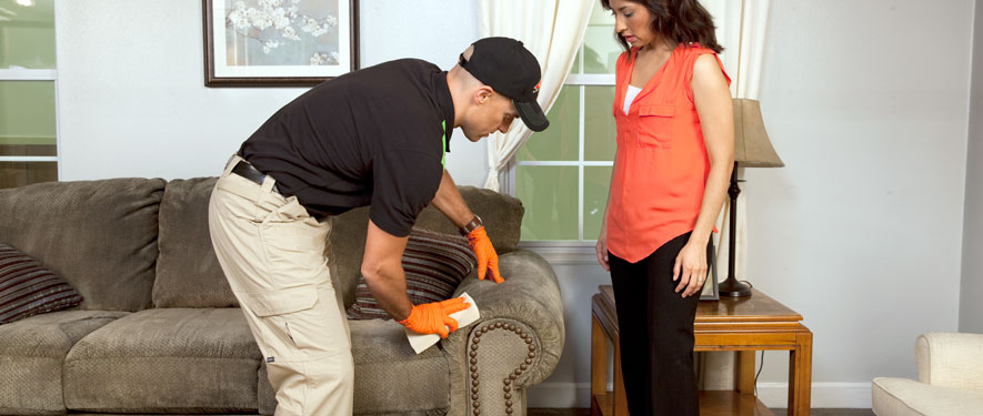 Morris, IL carpet upholstery cleaning